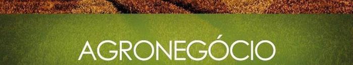 Business - Agronegócio